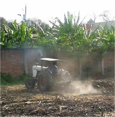 Labranza convencional y erosión evidente del suelo