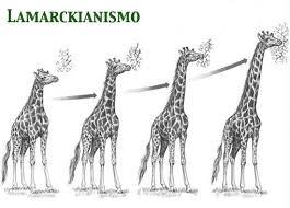 Lamarckianismo