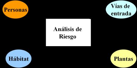 Elementos en el analisis de riesgo