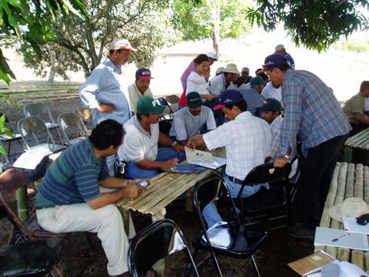 Agricultores en escuela de campo con componente arroz-maleza en Panamá