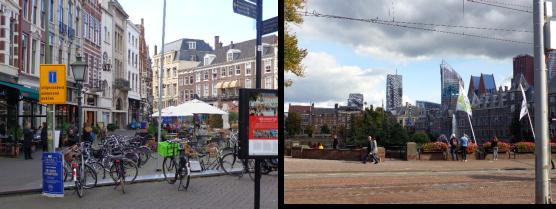 La Haya Y