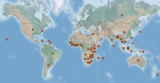 Mapa de distribución de Commelina benghalensis