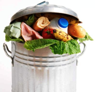 Alimentos en basurero.png