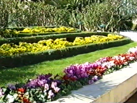 Montecarlo, jardín